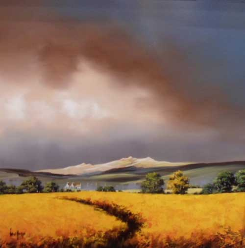 AM017 - Moody Sky Rape Field, by Allan Morgan
