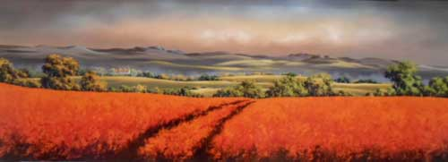 AM018 - Poppies Landscape by Allan Morgan