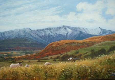 David Morgan Original Oil On Canvas - Landscape With Sheep
