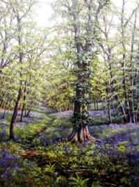 Bluebell Wood - Painting by Deborah Poynton
