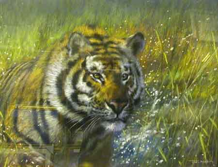 The Tiger - Painting by Joel Kirk
