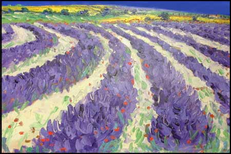 Lavender Field - Painting by John Bampfield