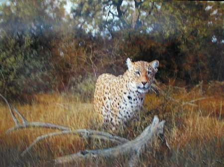 Cheetah - Painting by Stephen Parks